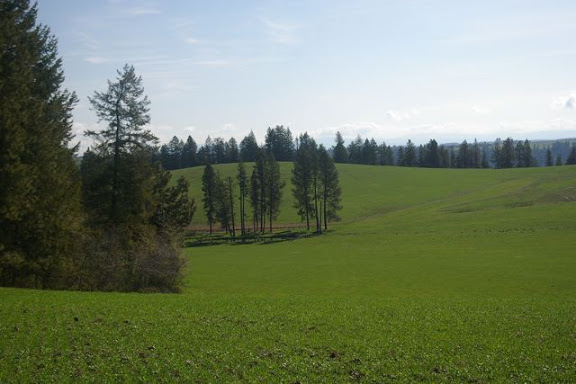 Idaho-Ranch-IMGP5176