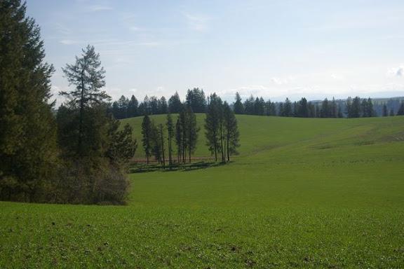Idaho-Ranch-IMGP5176