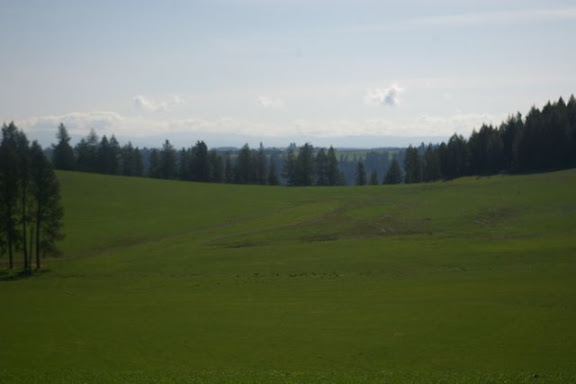Idaho-Ranch-IMGP5177