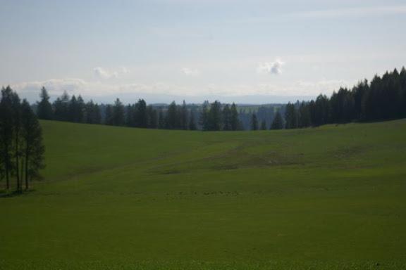 Idaho-Ranch-IMGP5177