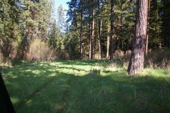 Idaho-Ranch-IMGP5186