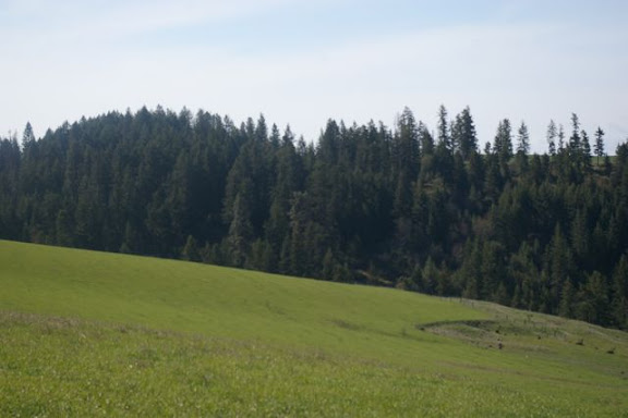 Idaho-Ranch-IMGP5197