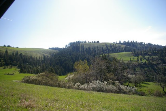 Idaho-Ranch-IMGP5213