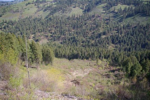 Idaho-Ranch-IMGP5222
